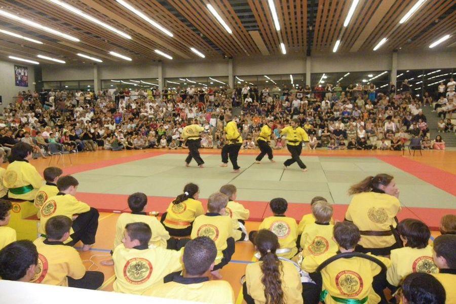 20ème Hommage au Maitre Hoang Nam 27 mai 2012